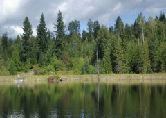 20 spectacular waterfront acres in the shuswap highlands